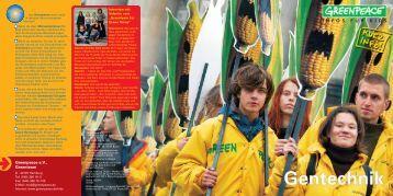Gentechnik Kurzinfo _____August_2004.pdf - Greenpeace Gruppen ...