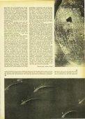 Magazin 195902 - Seite 5