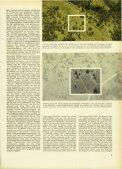 Magazin 195902 - Seite 7