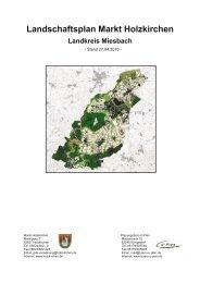 Erläuterungsbericht - Holzkirchen