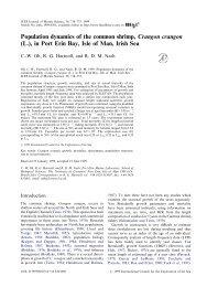 Population dynamics of the common shrimp, Crangon crangon (L ...