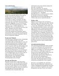 """Erfahrungsbericht """"Praxisphase 2007 – Universität Dundee"""" - Seite 2"""