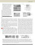 56 - 65.pdf - Page 6
