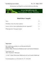 heimbiotop-newsletter Nr. 25 / März 2010 Inhalt ... - Die Wirbellosen