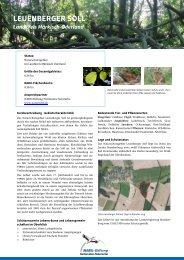 LEUENBERGER SOLL - NABU-Stiftung Nationales Naturerbe