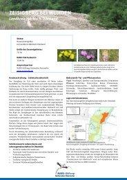 ZEISIGBERG BEI WUHDEN - NABU-Stiftung Nationales Naturerbe