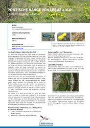 Pontische Hänge von Lebus - NABU-Stiftung Nationales Naturerbe