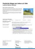 Pontische Hänge von Lebus - NABU-Stiftung Nationales Naturerbe - Seite 2