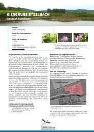 Kiesgrube Etzelbach - NABU-Stiftung Nationales Naturerbe