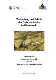 Verbreitung und Schutz der Gelbbauchunke im Wienerwald
