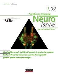 Neuroforum 1/09 - Neurowissenschaftliche Gesellschaft eV - MDC