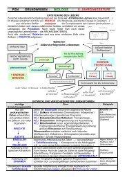 Grundwissen Biologie 8. Jahrgangsstufe - Die Oberstufe am ...