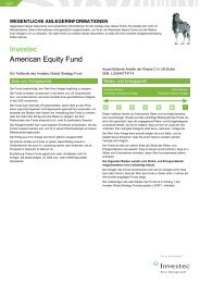 Investec American Equity Fund
