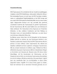 Dokument 1.pdf - OPUS