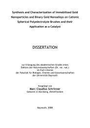 DISSERTATION - OPUS Bayreuth - Universität Bayreuth