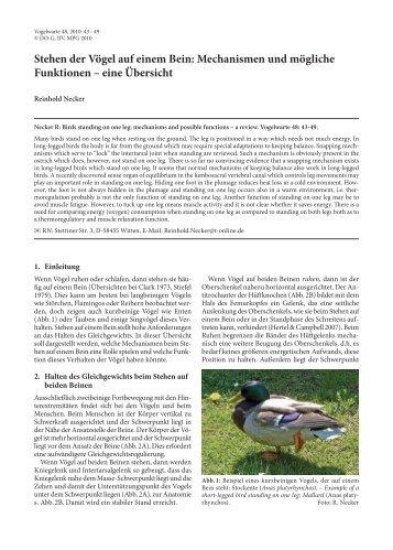 48_Heft1_2010-43-49.pdf