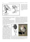 48_Heft1_2010-43-49.pdf - Seite 2