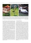 48_Heft1_2010-43-49.pdf - Seite 6