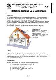 AE11 Netzeinspeisung von Solarstrom - Fachbereich Informatik und ...