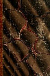 Pariser Nächte : eine Gallerie galanter Abentheuer, geheimer Liebes