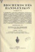 Biochemisches Handlexikon - Seite 5