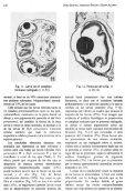 Documento completo - SeDiCI - Page 6
