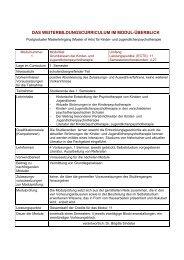 Weiterbildungscurriculum im Modul Ueberblick.pdf