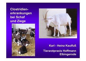 Clostridien- erkrankungen bei Schaf und Ziege - Landwirtschaft in ...