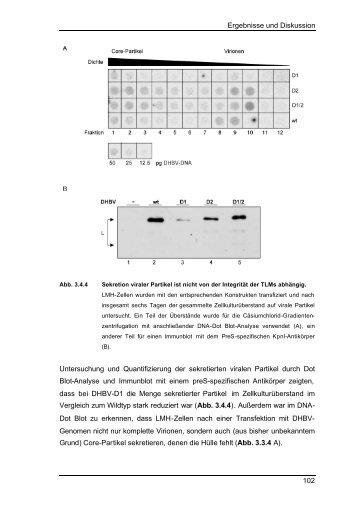 Ergebnisse und Diskussion 102 Untersuchung und ... - tuprints