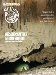 Frühling 2008 - Naturhistorisches Museum Wien