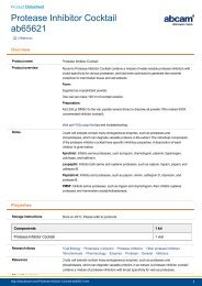 Protease Inhibitor Cocktail (ab65621) - Abcam