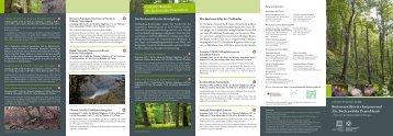 Buchenurwälder der Karpaten und Alte Buchenwälder Deutschlands
