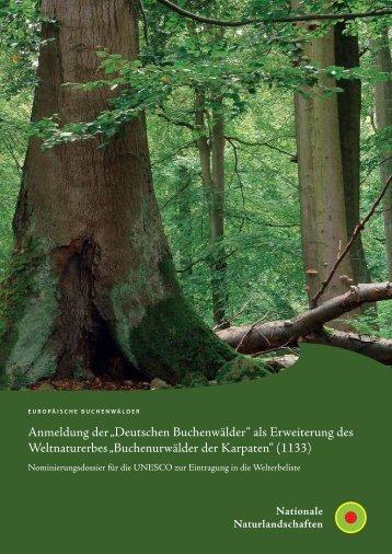 """""""Deutschen Buchenwälder"""" als Erweiterung des Weltnaturerbes"""