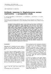 Antibody response in Staphylococcus aureus septicaemia - a ...