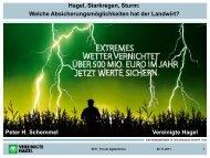 Hagel, Starkregen, Sturm: Welche Absicherungsmöglichkeiten hat der ...