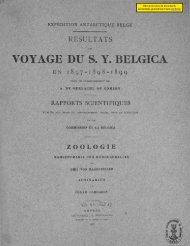 Voyage du S.Y. Belgica. Vol. 7, part 12. Zoologie - Archimer - Ifremer