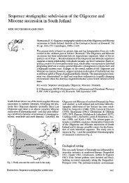 Bulletin of the Geological Society of Denmark, Vol. 43/2, pp. 143-155