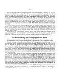 Tafel-Erklärung. - Seite 4