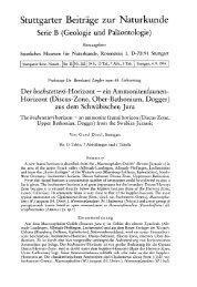 Stuttgarter Beiträge zur Naturkunde