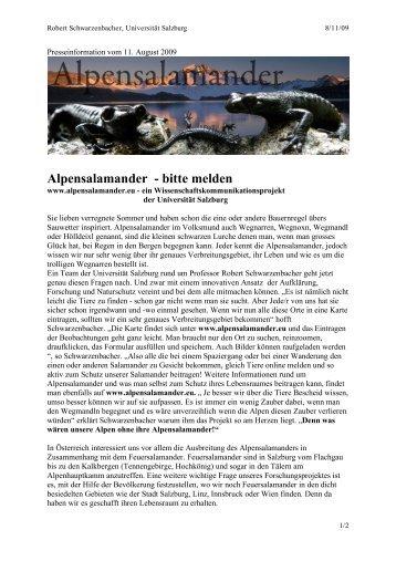 Alpensalamander - bitte melden