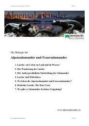 Alpensalamander und Feuersalamander 1. Lurche: ein Leben an
