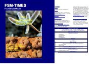 FSM-TIMES issue 26 (January-March 2011) - Striped Mouse