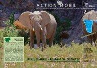 PDF 2/2013 - Action Mobil