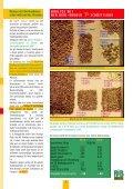 -Mähdrusch - Agri Broker eK - Seite 5