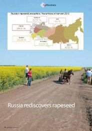 Russia rediscovers rapeseed - agriFuture