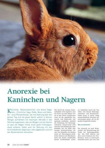 Apetitmangel - Albrecht