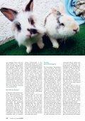 Apetitmangel - Albrecht - Seite 3
