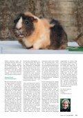 Apetitmangel - Albrecht - Seite 4