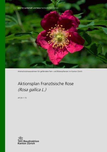 Aktionsplan Französische Rose - Amt für Landschaft und Natur ...
