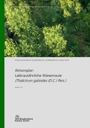 Labkrautähnliche Wiesenraute - Amt für Landschaft und Natur ...